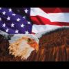 Diamond Dotz Adler mit USA Flage